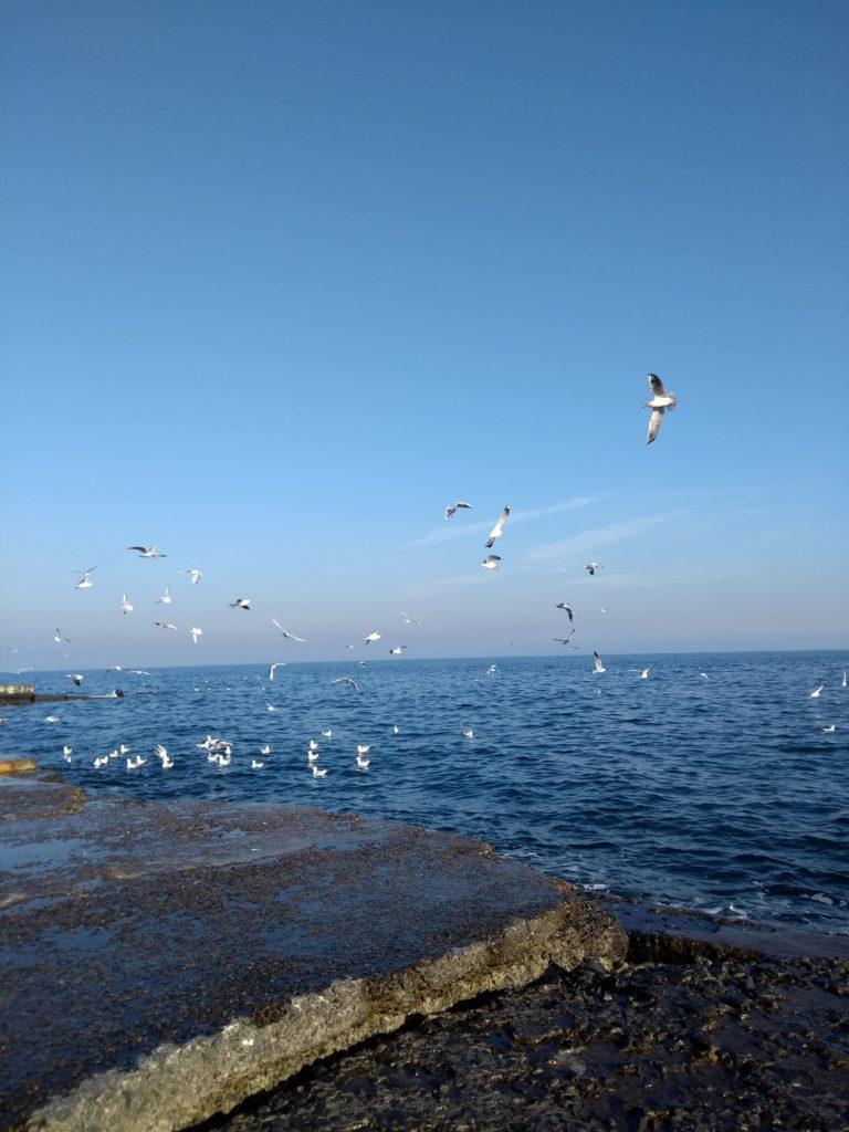 Odessa plaże